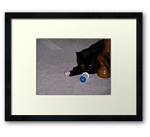 Lets Play With My Toys Framed Print