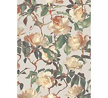 Soft Vintage Rose Pattern Photographic Print