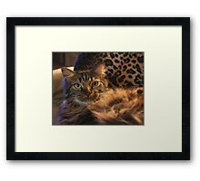 Yes, I am Very Furry! Framed Print