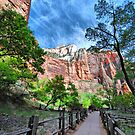First Visit to Zion by Barbara Manis