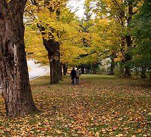 A Walk In The Fall by CarolM