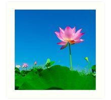 Yoga meditation lotus flower Art Print