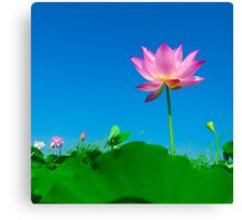 Yoga meditation lotus flower Canvas Print