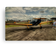 Two-Tone Monoplane Canvas Print