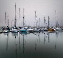 Bellerive yacht club marina in early morning fog by Suellen Cook