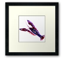 Crawly Critter Series 3 Framed Print