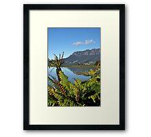 photoj Tas, Mt Roland Framed Print