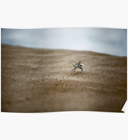 Run Crabby Run Poster