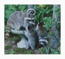 Raccoon Mom with 4 Kits Kids Clothes