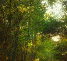 Forest Pathway Sticker