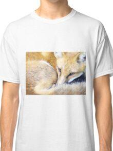 Resting Red Fox Classic T-Shirt