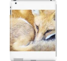 Resting Red Fox iPad Case/Skin