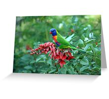 The colours of nature Greeting Card