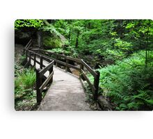 somewhere in the Hocking Hills area Canvas Print