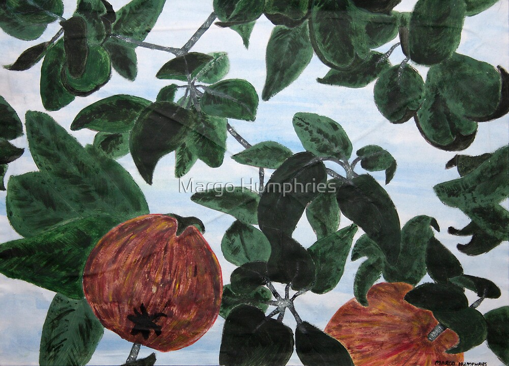 Appletree by Margo Humphries