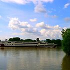 Pleasure boat trip on river Danube near capital Budapest,Hungary,2010  by ambrusz