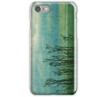Seaside iPhone Case/Skin