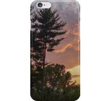 Grace Park Sunset iPhone Case/Skin