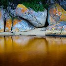 Tidal River Rocks by Mieke Boynton