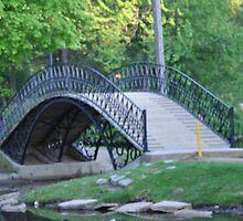 Albanian Bridge in Park 1 by Petrit  Metohu