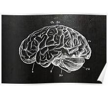Brain Engraving Poster