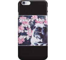 The Hug to My Pug iPhone Case/Skin