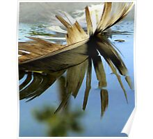 Feather in a Puddle With Palm Poster