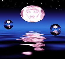 The Reflection Within-Vampire Moonlight  by Michelle Scott