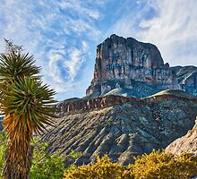 El Capitan at Guadalupe Mountains Texas by Beecreekphoto