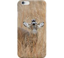 Romance in the Air iPhone Case/Skin