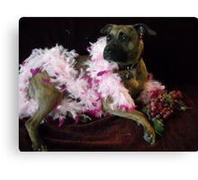 Ruby posing Canvas Print