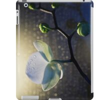 Shy and Shining iPad Case/Skin