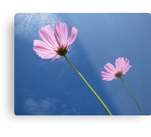 to help keep the Sun shining in our hearts Metal Print