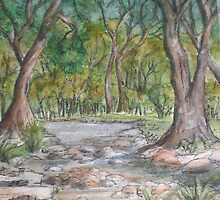 Dry Creek in Spring by Betty Burnitt