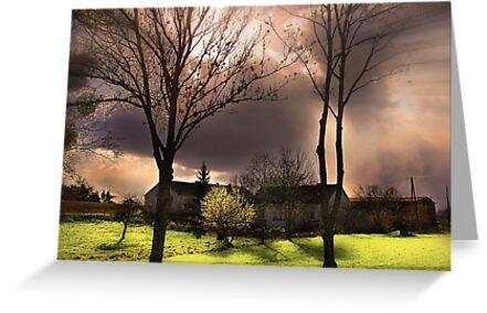 Before A Storm by Danuta Antas