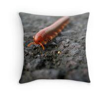 Millipede, Hana Throw Pillow