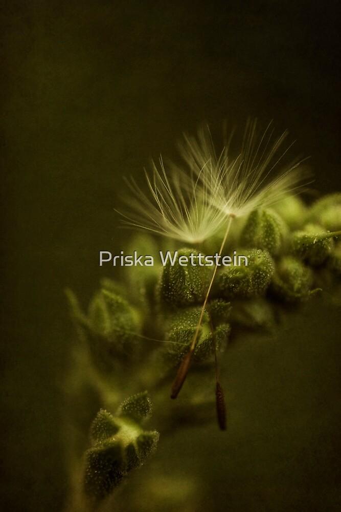 Soul mates by Priska Wettstein