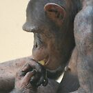 The Thinker by Paul Morley