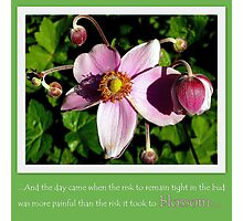 Take the risk to blossom Photographic Print