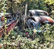 """""""Long Term Off Road Parking """"... prints and products by © Bob Hall"""