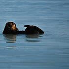 Alaska Sea Otter by Bob Moore