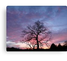 See It With Your Eyes Canvas Print