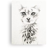 Drawing of Chic White Cat Canvas Print