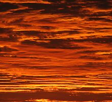 Fire Clouds - Horseshoe Bay Queensland by Shelley Fitzgibbons