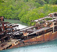 Ship wreck in Honduras by Carl LaCasse