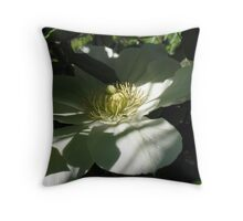 Clematis in Half Shade Throw Pillow
