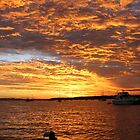 Fire in the Sky - sunset Horseshoe Bay Queensland by Shelley Fitzgibbons