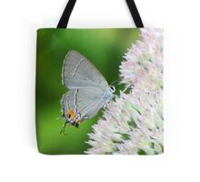 Delicate Gray Hairstreak Butterfly Tote Bag