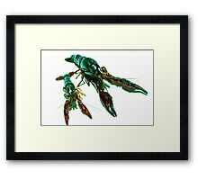 Two Crawly Critters Framed Print
