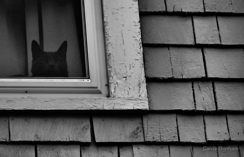 Someone's Watching by Carrie Bonham